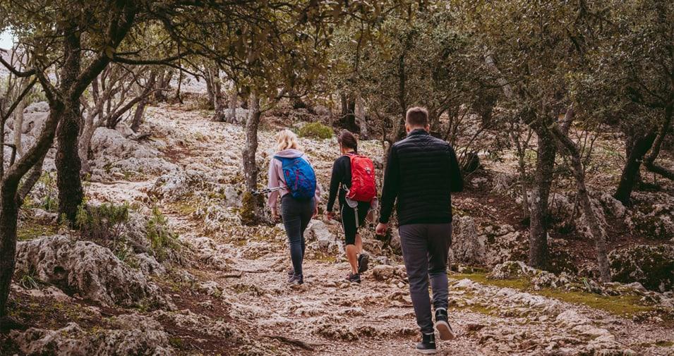 hiking-mallorca-955x505_c