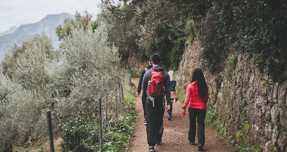 hiking-soller-mallorca-955x505_c